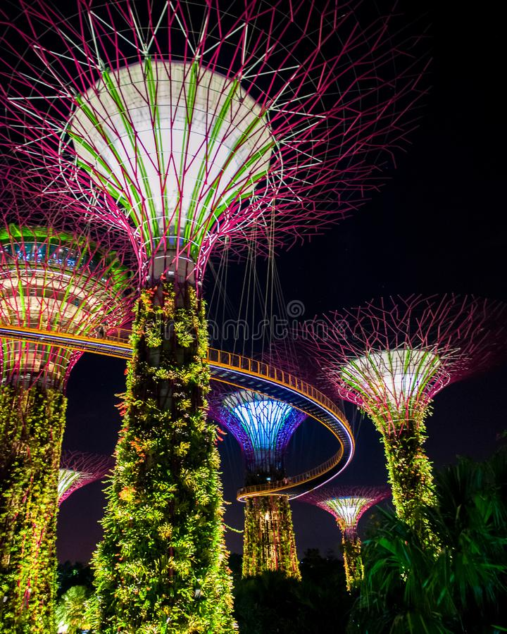 Beautiful illuminated supertree building in Singapore royalty free stock photos