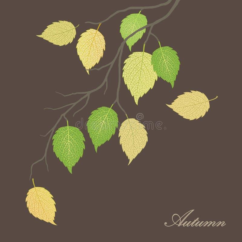 Beautiful illustration of autumn leaves on a tree stock illustration
