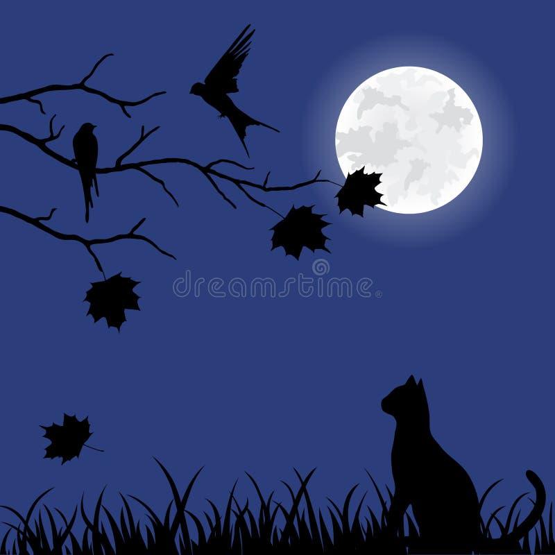 Beautiful illustration with autumn tree and cat vector illustration