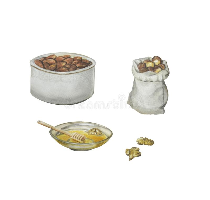 Beautiful illustration with nuts and dried fruits in plates and sacks. Dried apricots, raisins, walnuts, almonds, hazelnuts and honey, isolated on white for royalty free illustration