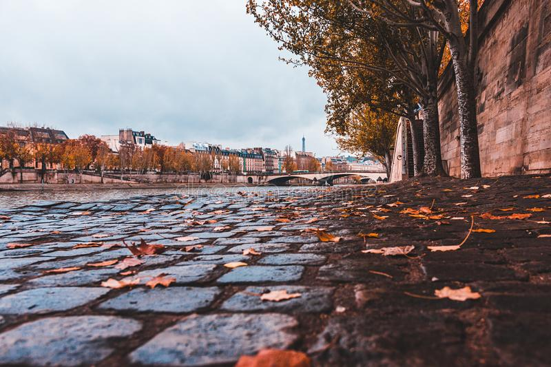 Seine River from Low angle shot in Paris France with autumn leaves royalty free stock photography