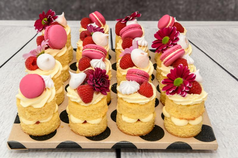 Beautiful individual homemade Birthday Cakes. With meringues raspberries and macaroons stock photo
