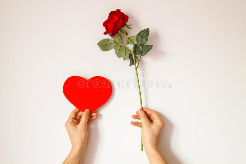 Beautiful interesting background for Valentine`s day. Conceptual photo with red rose and heart on white background. Male hands hold a rose and an empty space royalty free stock image