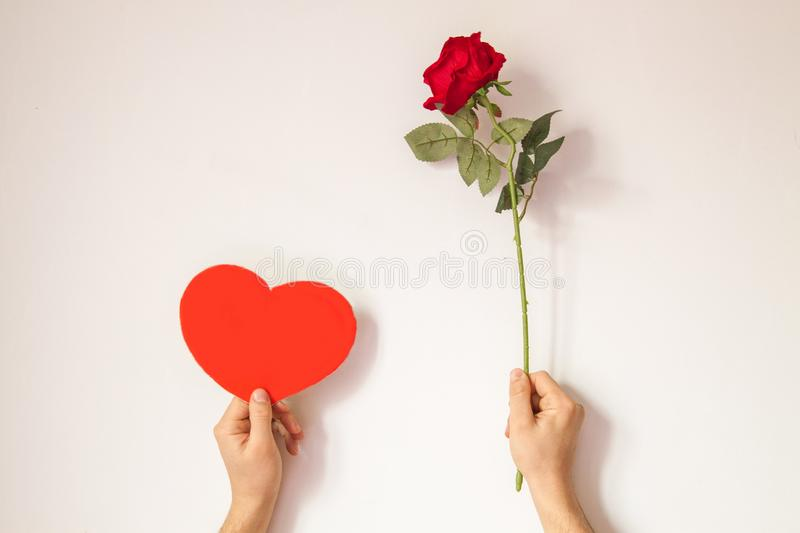 Beautiful interesting background for Valentine`s day. Conceptual photo with red rose and heart on white background. Male hands hold a rose and an empty space stock photography