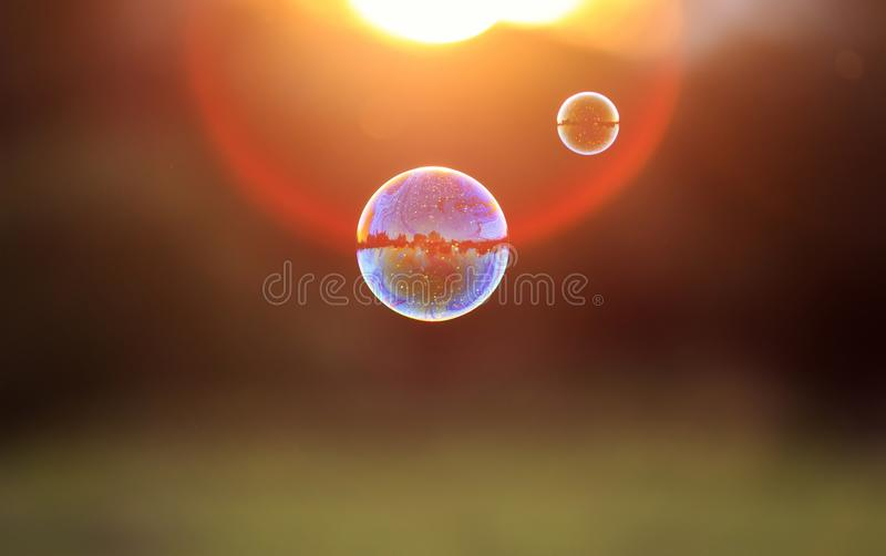 beautiful iridescent soap bubbles with reflection landscape flies to sunset over summer meadow stock images