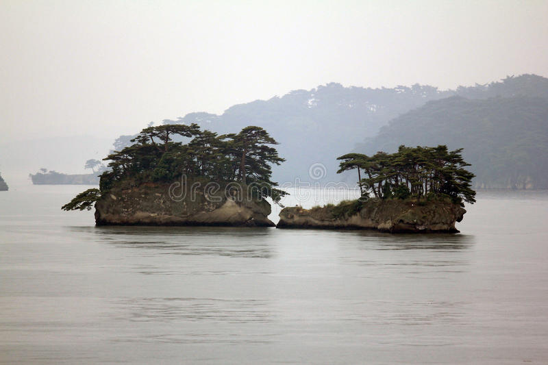 Beautiful islets in Matsushima covered with pines growing on rock, regarded as one of the three best sights in Japan stock photos