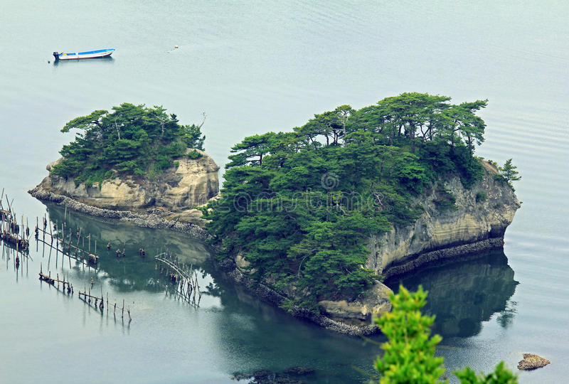 Beautiful islets in Matsushima covered with pines growing on rock, regarded as one of the three best sights in Japan stock images