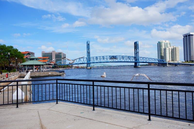 Beautiful Jacksonville downtown. Skyscraper taken in Jacksonville, florida royalty free stock photography