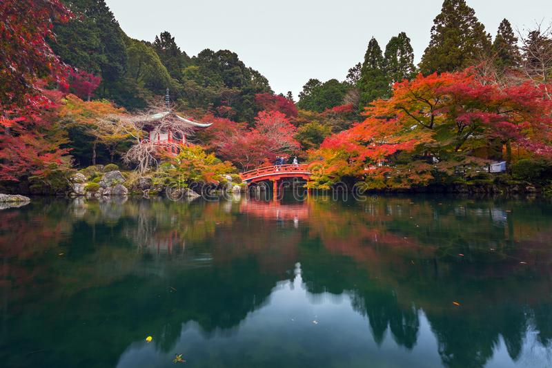 Beautiful japanese garden with colorful maple trees in autumn stock photos