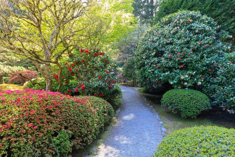 Download Beautiful Japanese Garden In Portland At Spring Season Stock Image    Image Of Theme,