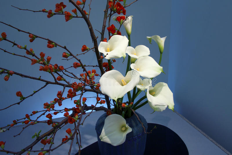 Beautiful japanese ikebana royalty free stock image