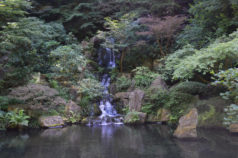 Beautiful japanese pond with a waterfall royalty free stock image