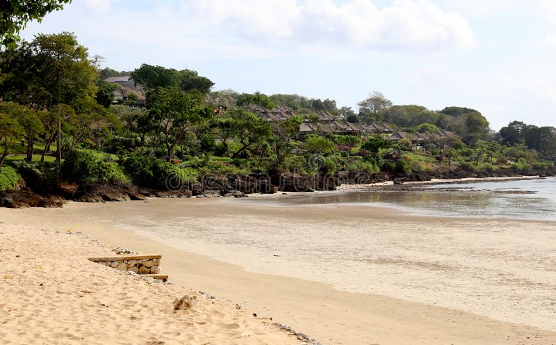 Beautiful jungle beach with blue ocean at Bali Indonesia with yellow sand and green forest in the back. royalty free stock images