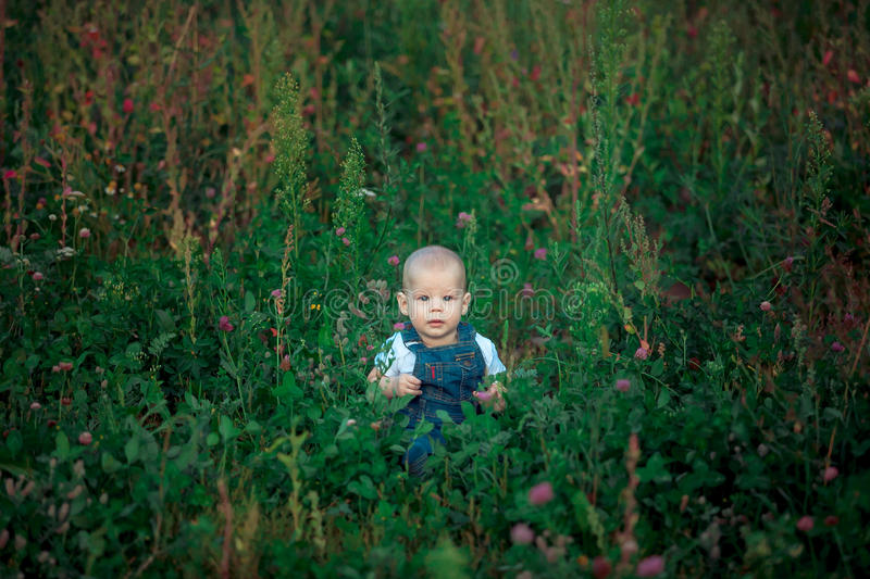 beautiful kid sitting in green grass in summer royalty free stock photo