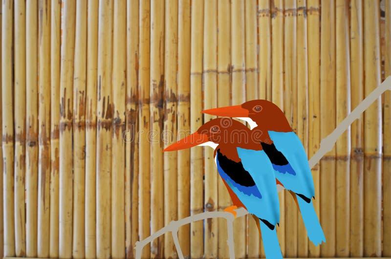 Beautiful kingfishers on bamboo background stock illustration