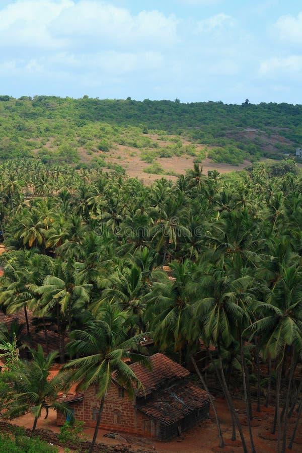 Beautiful Konkan Landscape royalty free stock photo