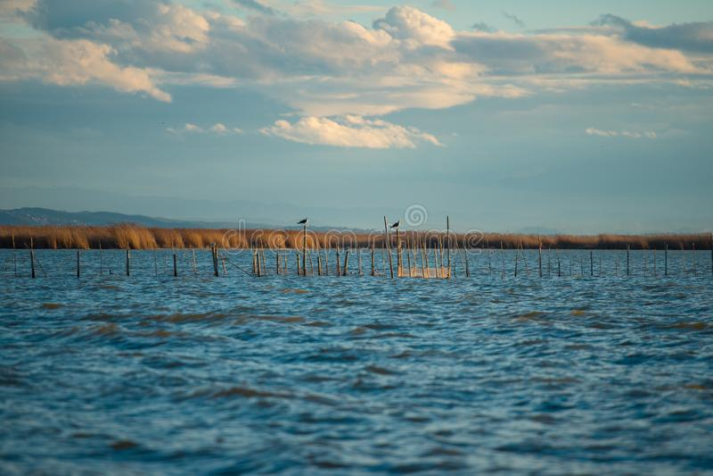 Beautiful L`Albufera lake view at sunset royalty free stock photos