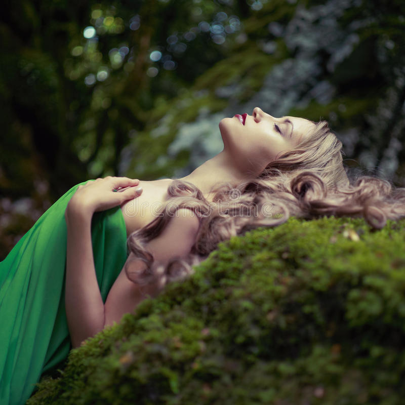 Beautiful lady in the coniferous forest stock photos