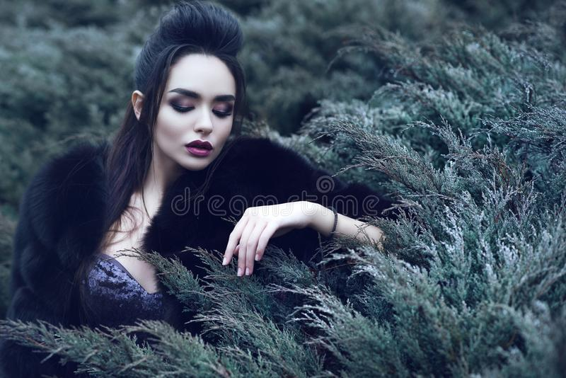 Beautiful lady wearing luxurious sequin dress and black sable fur coat sitting in coniferous bush and touching it with her fingers. Young beautiful lady with royalty free stock photo