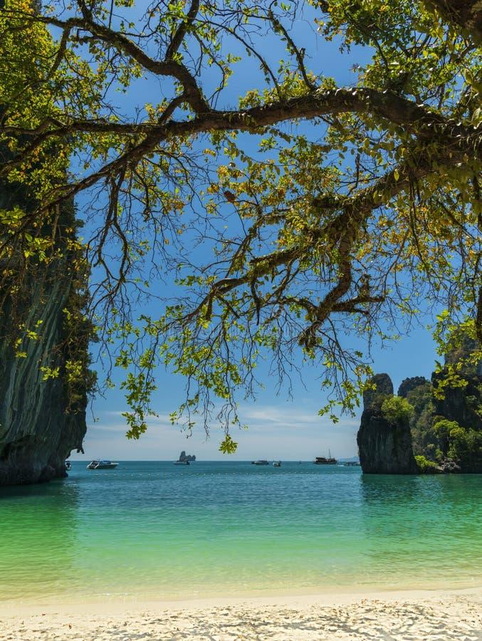 Beautiful lagoon in tropics. Krabi province, Thailand stock photography