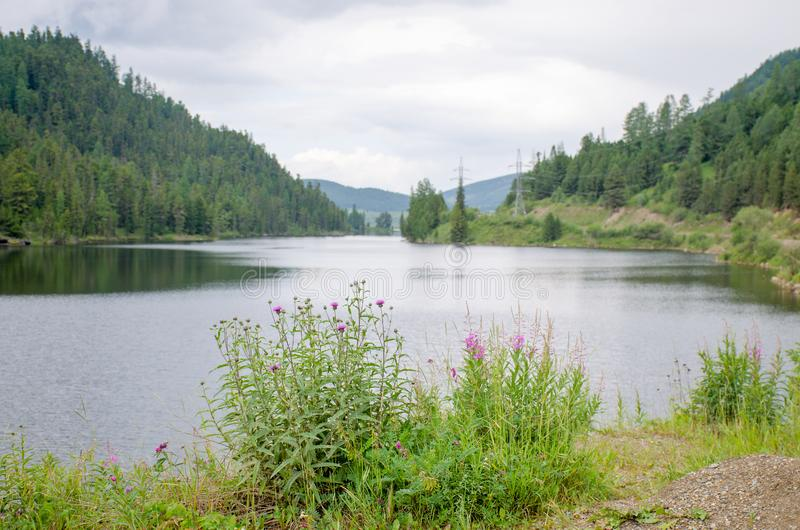 Beautiful lake in Altai mountains and forest Russia stock photos