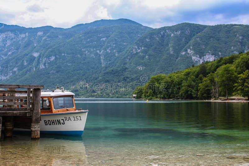 Beautiful Lake Bohinj stock images
