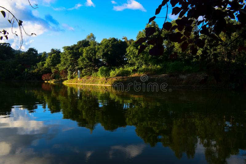Beautiful lake in the forest. Nature, landscape, photography, serchhip, mizoram, india, asia stock images