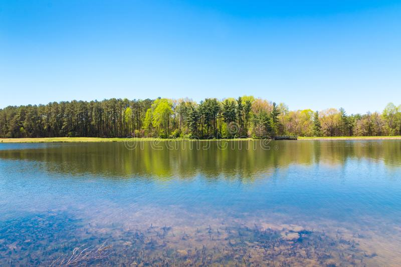 Beautiful lake with forest reflection on sunny spring day. Country springtime landscape stock image