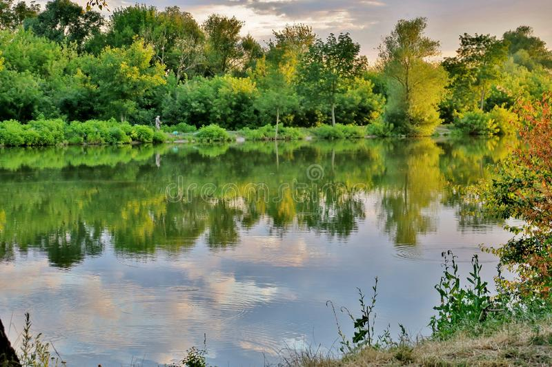 Beautiful lake with green trees whose branches fall into the water royalty free stock photography