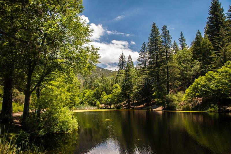Beautiful Lake, Idyllwild CA royalty free stock image
