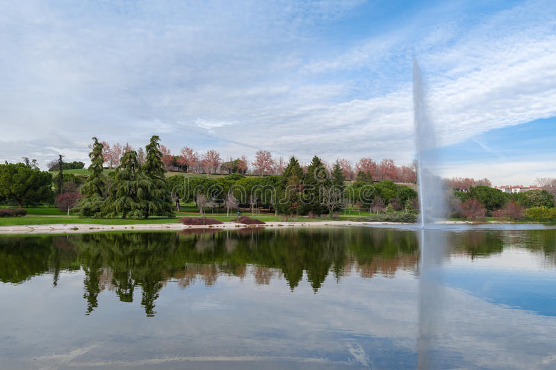 Beautiful lake with jet of surrounded by trees royalty free stock photography
