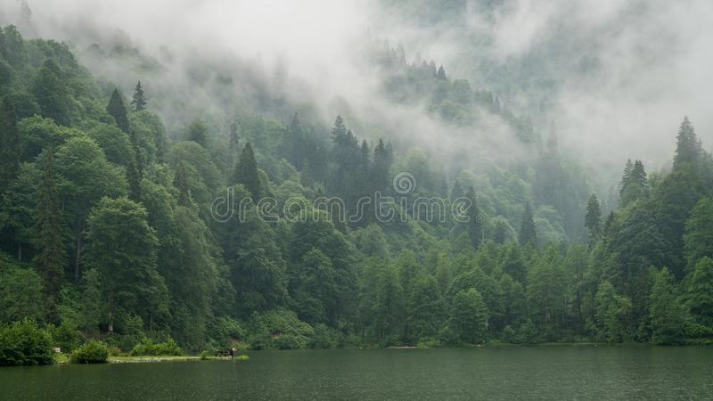 A beautiful lake landscape from Borcka Karagol Nature Park, Artvin, Turkey. Artvin, Turkey - July 2018: A beautiful lake landscape from Borcka Karagol Nature royalty free stock image