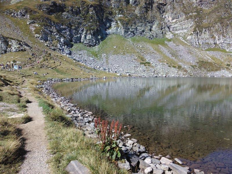 Beautiful lake royalty free stock images