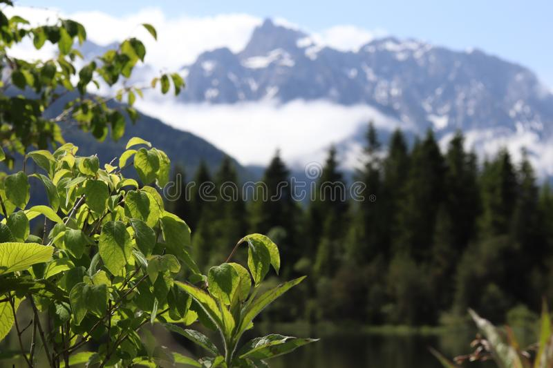 Beautiful lake in the mountains in Bavaria, Germany stock images