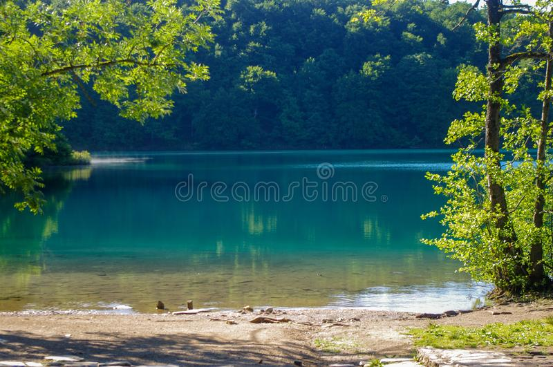 Beautiful lake in Plitvice National park. A picture of a beautiful lake in Plitvice National park, Croatia. Framed between trees, with clear blue water royalty free stock photos
