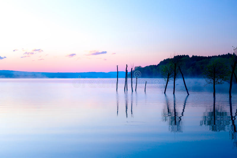 Beautiful lake view in mornig fog with trees and mystic mountains on the background in tender purple-blue tones, with stock images