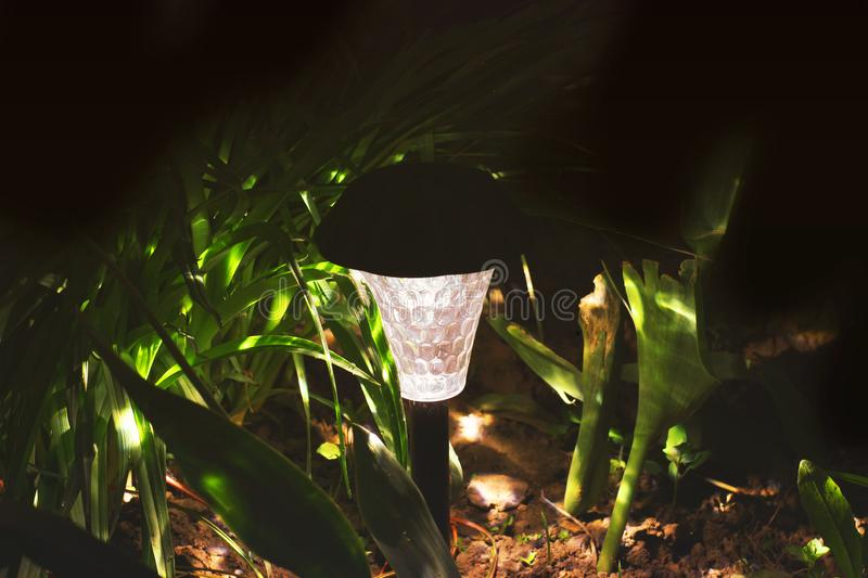 Beautiful lamp in the garden. Lamp with solar battery stock photos