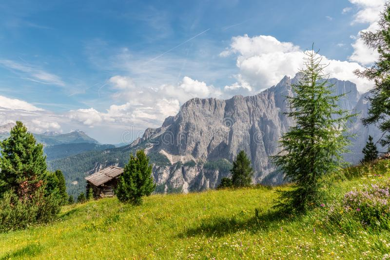 Beautiful landscape with alpine meadow on a background of Italian Dolomites mountains. stock images