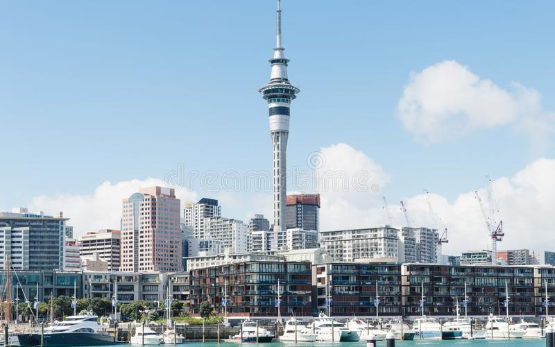 Beautiful landscape of Auckland in New Zealand. The sunshine is fine stock photography