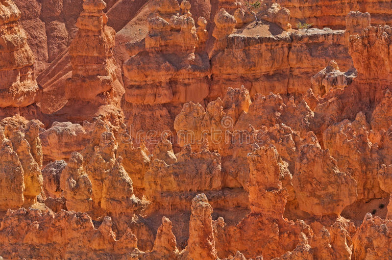 Beautiful Landscape of Bryce Canyon, Utah, USA royalty free stock photo