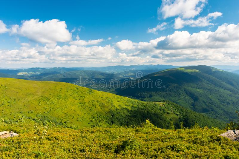 Beautiful landscape of carpathian mountains royalty free stock image