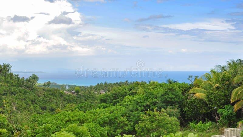 Beautiful landscape of Cebu Island. Beautiful tree and sea landscape of Cebu Island, Philippines royalty free stock image