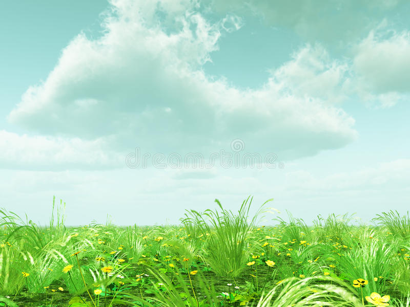 Beautiful Landscape With Flowers Stock Images