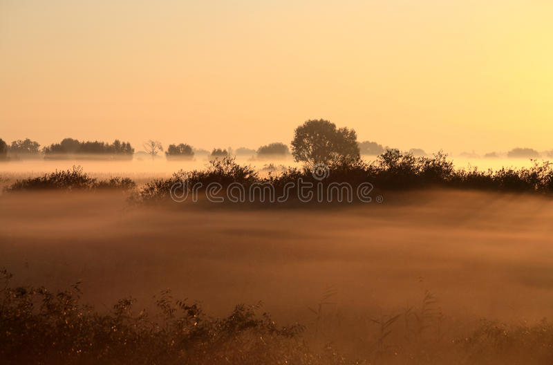 Beautiful Landscape In The Foggy Morning Stock Image