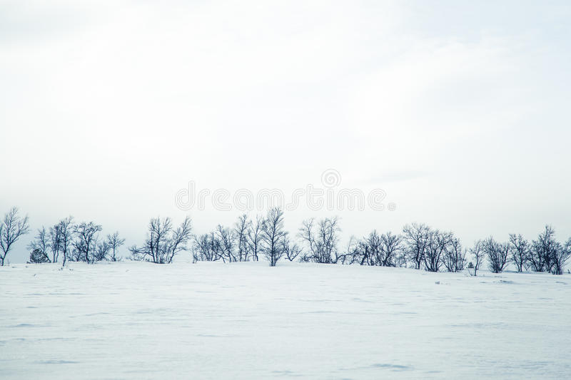 A beautiful landscape of a frozen plains in a snowy winter day royalty free stock photos