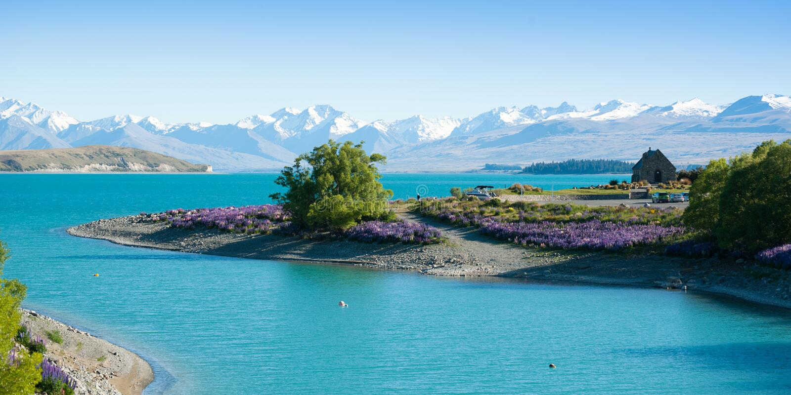 Beautiful landscape of garden, lake and snow mountain at Lake Tekapo, South Island, New Zealand. Beautiful landscape of flower garden, tree, lake and snow