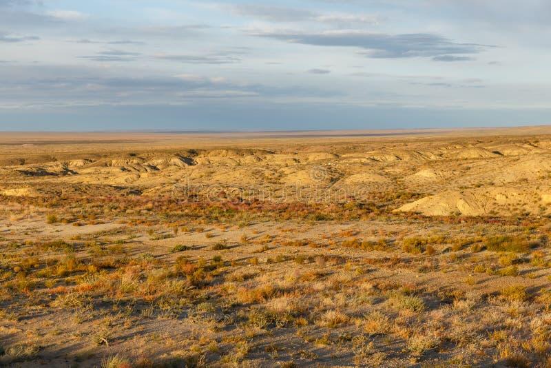 Gobi desert mongolia. Beautiful landscape of the gobi desert, mongolia stock photo