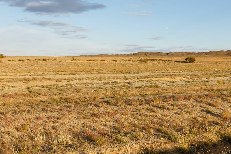 Gobi desert mongolia. Beautiful landscape of the gobi desert, mongolia royalty free stock photos
