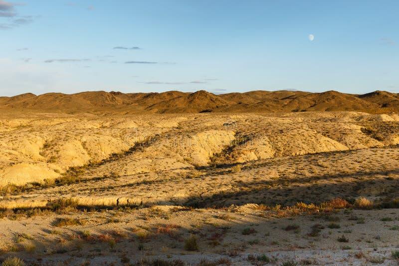 Gobi desert mongolia. Beautiful landscape of the gobi desert, mongolia stock image