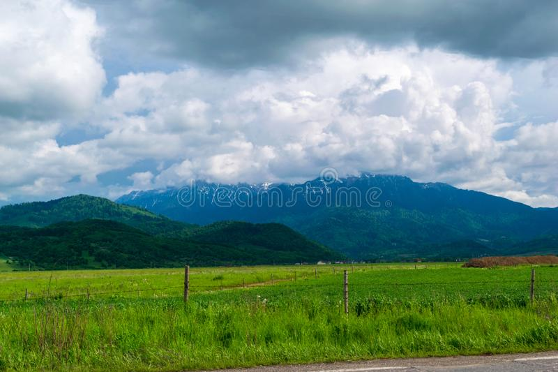 Beautiful landscape with green grassland in the foreground and blue mountains in the background.  royalty free stock images